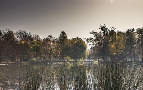 Autumn colors: Lovely lake & park scenery