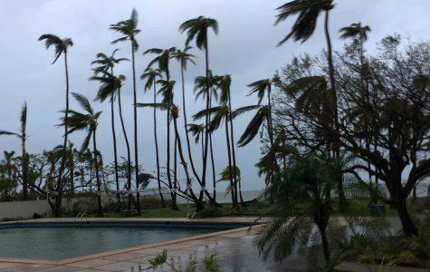 Guest column: UI alum rides out Hurricane Maria