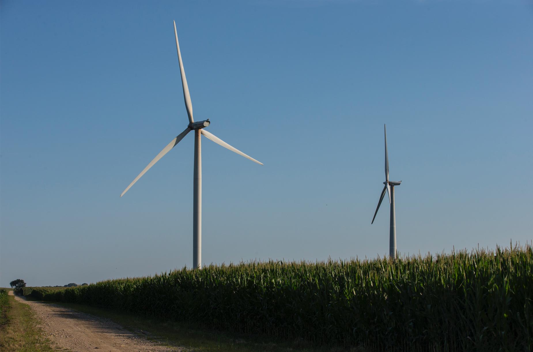 The Pioneer Grove Wind Farm is seen in Mechanicsville, Iowa on Wednesday, July 11, 2018. (Nick Rohlman/The Daily Iowan)