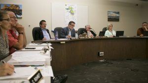 Park Master plans high bids worry some, but are in good taste