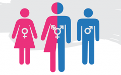Weigel: Our identities are on a spectrum, including gender