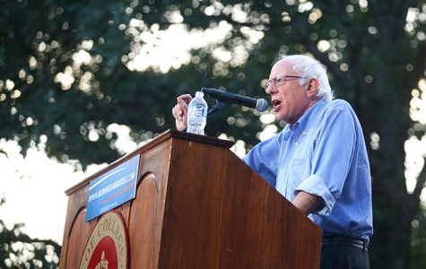 Do Sanders supporters really understand socialism?