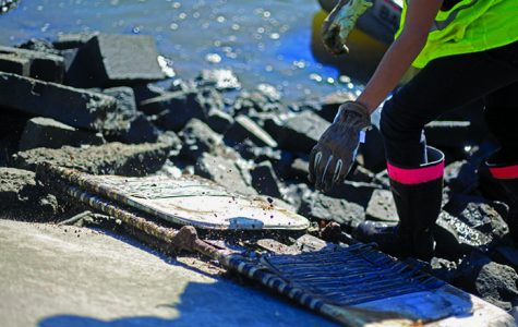 Cleanup project targets Iowa River
