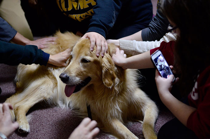 Students+gather+at+the+IMU+to+pet+the+playful+pup%2C+Wilson+on+Monday%2C+Dec.+14.+Stress+dogs+will+be+in+the+IMU+again+on+Wednesday%2C+Dec.+16.+%28Daily+Iowan%2FKarley+Finkel%29