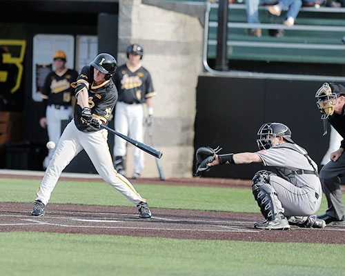 Iowa outfielder Robert Neustrom swings the bat during the Iowa-Northern Illinois game at Duane Banks Field on Tuesday, March 29. The Hawkeye bats came alive in their 12-3 defeat over the Huskies. (The Daily Iowan/ Alex Kroeze)
