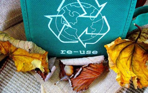 Iowa City bans cardboard in landfill