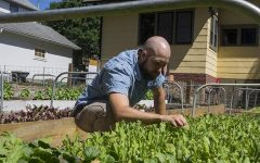 'New Age' farmers grow local produce year-round