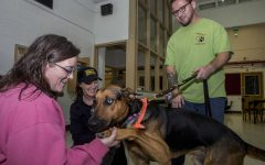 Opinion: Debunking misunderstandings of emotional support and service animals