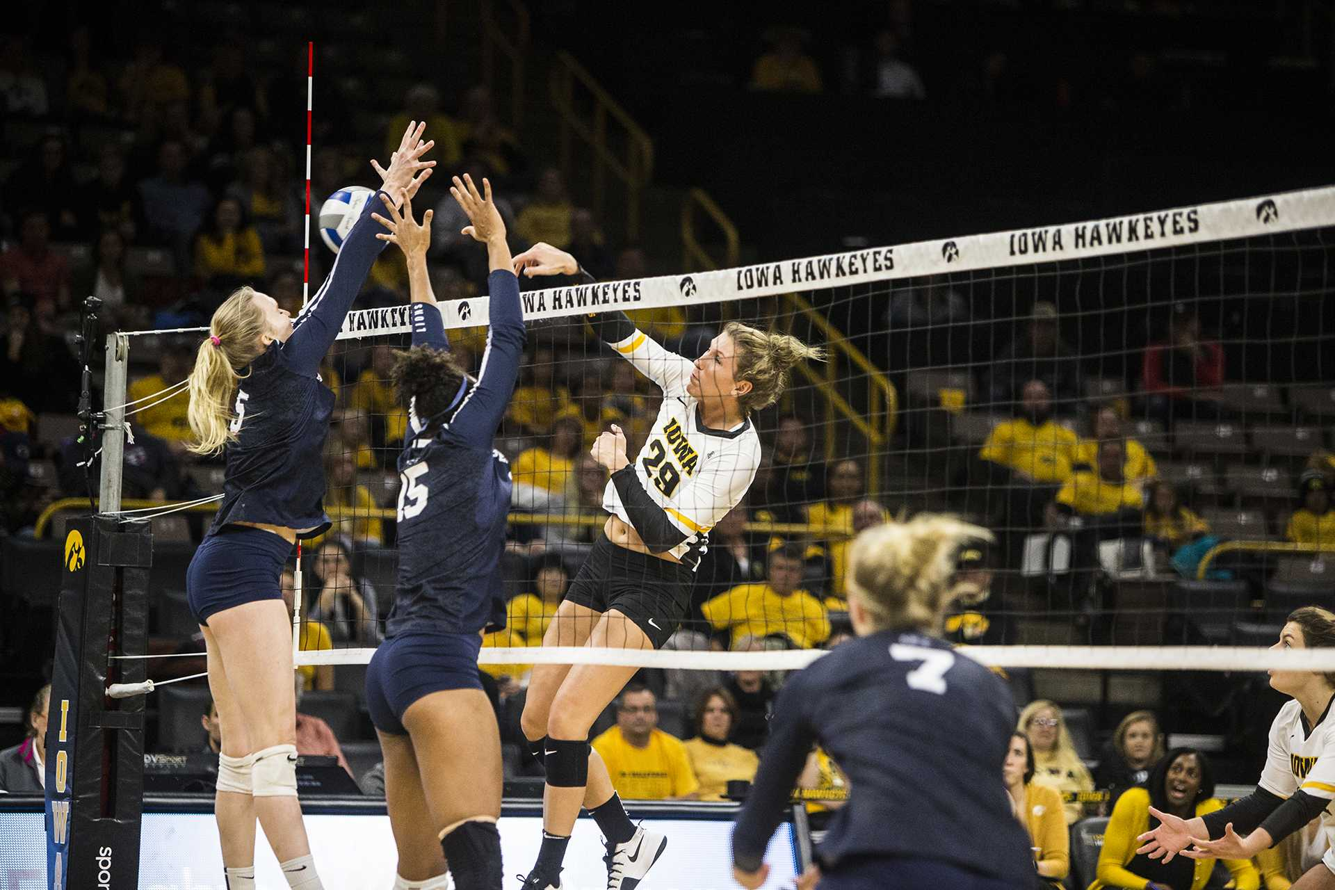 Iowa's Jess Janota (29) spikes the ball during the match between Iowa and Penn State at Carver-Hawkeye Arena on Wednesday, Nov. 8, 2017. The Hawkeyes lost to the Nittany Lions 3-0. (Ben Smith/The Daily Iowan)