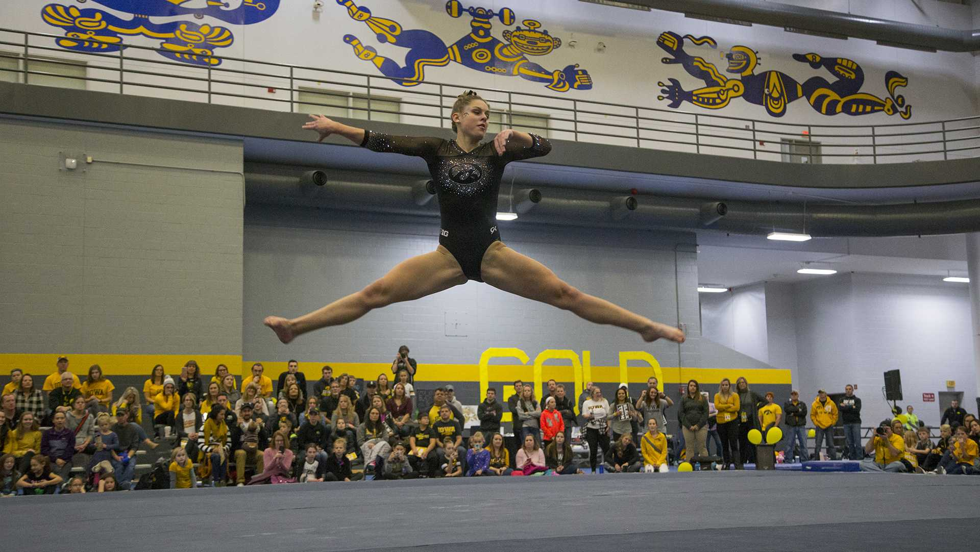 Gymnasts during the Black and Gold Intrasquad meet at the Field House on Saturday, Dec. 2, 2017.  The Gold team defeated the Black team, 13-7. (Lily Smith/The Daily Iowan)