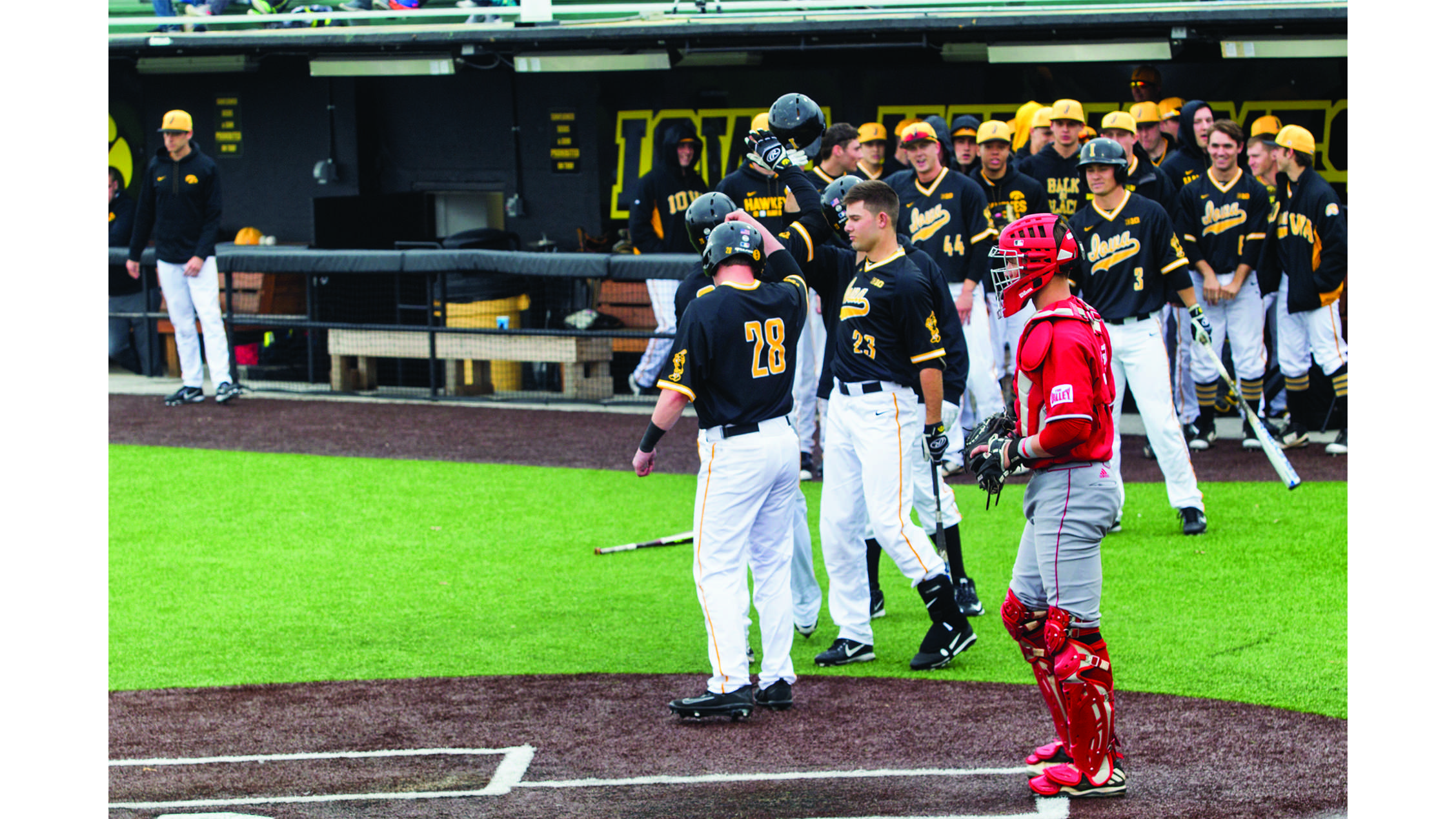 Hawkeye defeated Bradley 13-9 during men' baseball game between Iowa and Bradley at Duane Banks Field on Wednesday,  March 28, 2018. Hawkeye celebrated home-run. (Yue Zhang/The Daily Iowan)