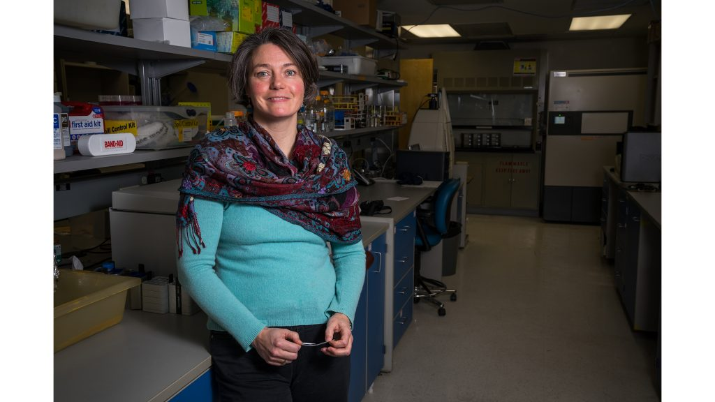 Dr. Christine Petersen, an associate professor at the University of Iowa, poses for a portrait in her lab on Tuesday, April 3, 2018. Petersen is the Director of the Center for Emerging Infectious Diseases. (Matthew Finley/The Daily Iowan)