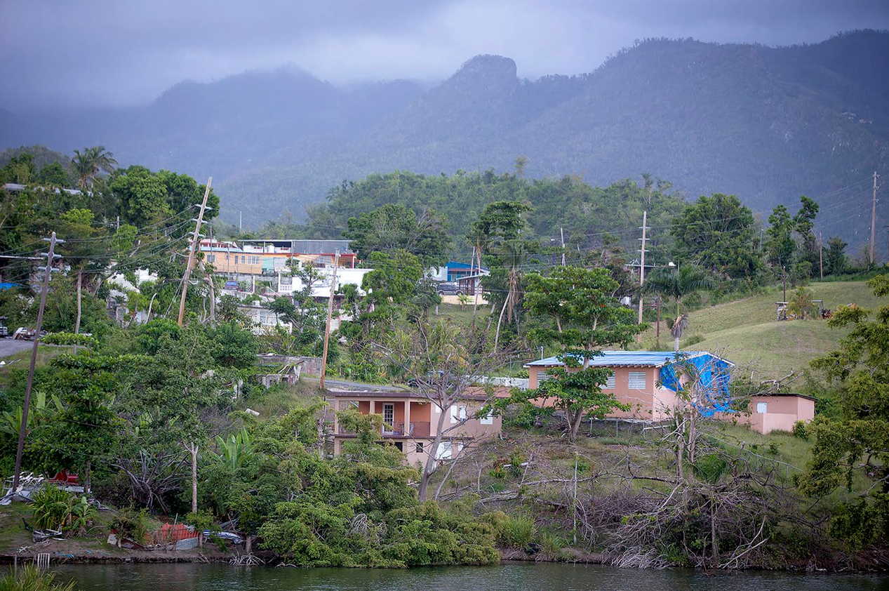 Trees remained damaged and destroyed on the edge of a lake and blue FEMA tarps covered rooftops more than seven months after Hurricane Maria, Wednesday, April 18, 2018 in Villalba, Puerto Rico. (Elizabeth Flores/Minneapolis Star Tribune/TNS)