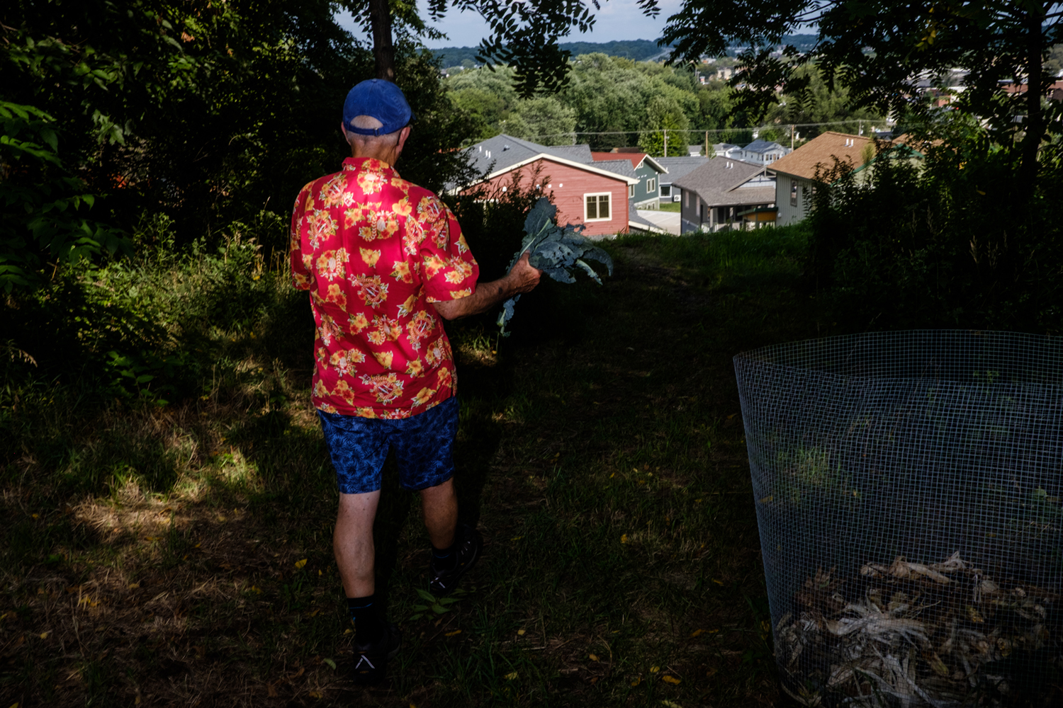 John Bowman leaves the community garden with some kale and a tomato at the Prairie Hill Co-Housing community in Iowa City on Thursday, August 16, 2018. John and his wife Valerie moved to Prairie Hill because they felt that cohousing offered a good balance between community and privacy. The community is based on the Danish coousing Model and includes private residences as well as spaces common to all residents, such as a communal garden. (Nick Rohlman/The Daily Iowan)