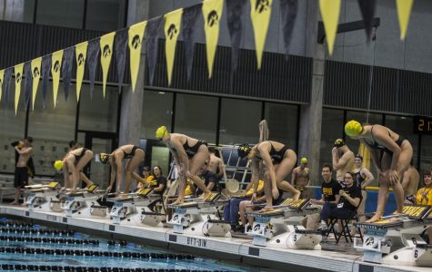 Iowa swimming and diving tops Michigan State before Intrasquad