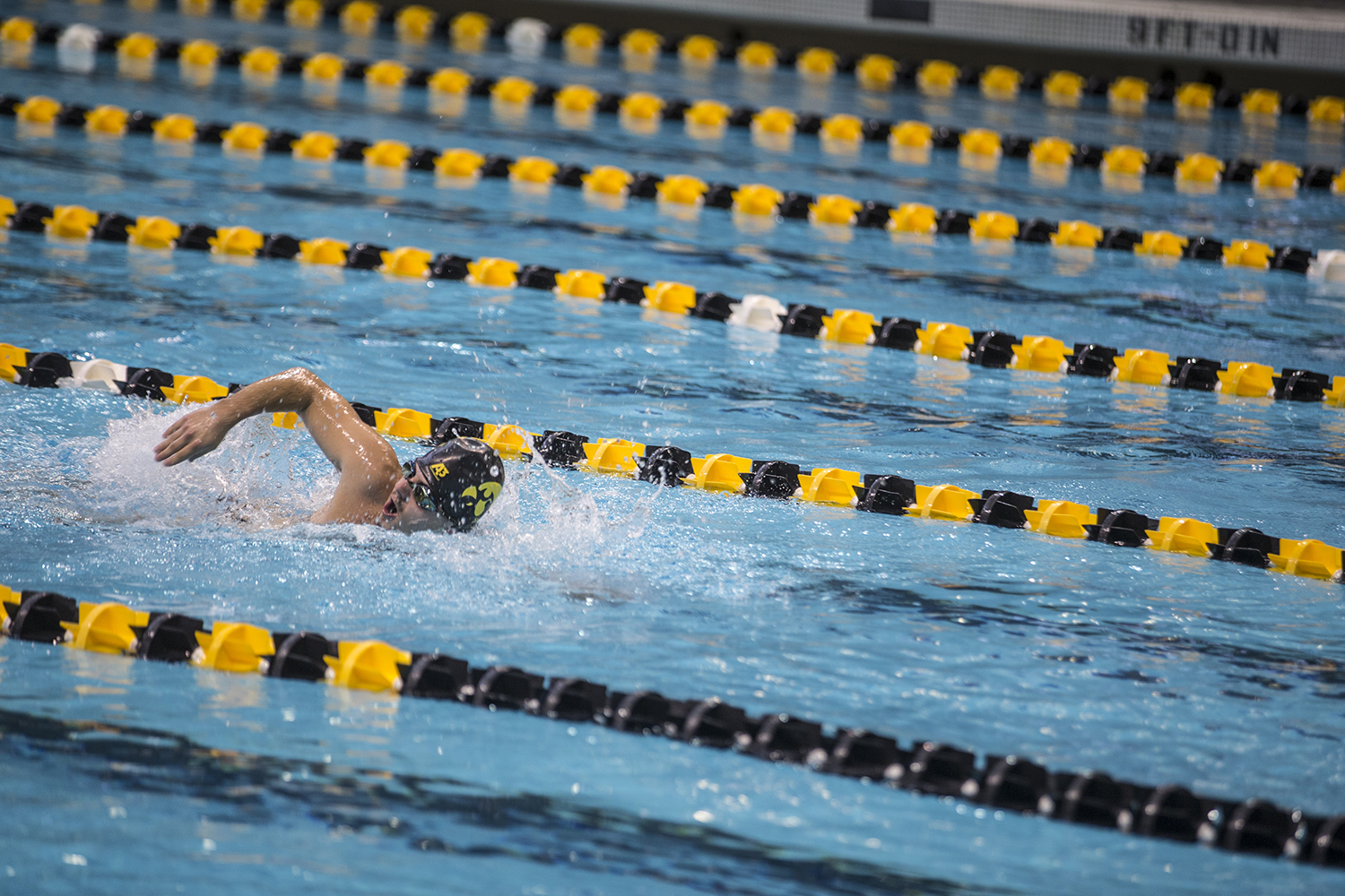 A+swimmer+competes+in+a+freestyle+event+during+the+Iowa+Swimming+and+Diving+Intrasquad+Meet+at+the+Campus+Recreation+and+Wellness+Center+on+Saturday%2C+Sept.+29%2C+2018.