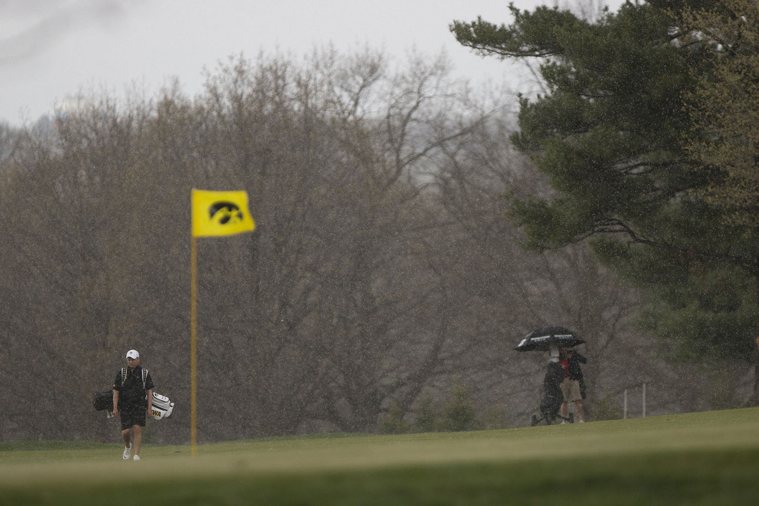 Iowa's Matthew Walker walks on the green in a downpour during the Hawkeye Invitational at Finkbine Golf Course on Saturday, April 15, 2017.