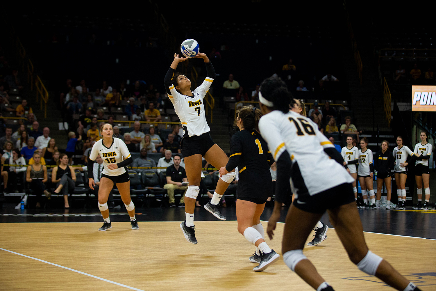 Brie Orr sets the ball during Iowa's match against Eastern Illinois on Sunday, Sept. 9, 2018 at Carver-Hawkeye Arena. The Hawkeyes won the match 3-0.