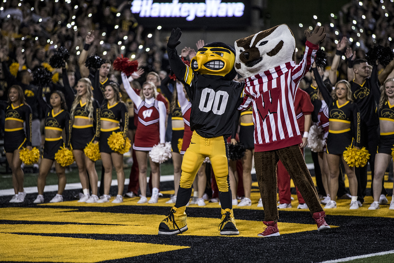 Herky the Hawk and Bucky the Badger wave to the Children's Hospital during Iowa's game against Wisconsin at Kinnick Stadium on Saturday, September 22, 2018. The Badgers defeated the Hawkeyes 28-17.
