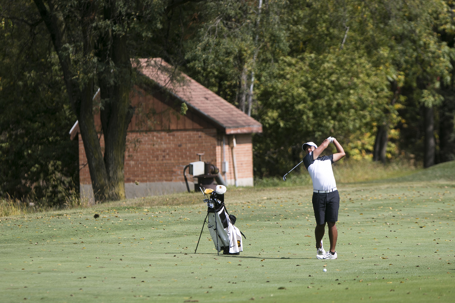 Iowa's Ryoto Furuya chips during a tournament at the Donald Ross Course at the Cedar Rapids Country Club in Cedar Rapids on Tuesday, Sept. 19, 2017.