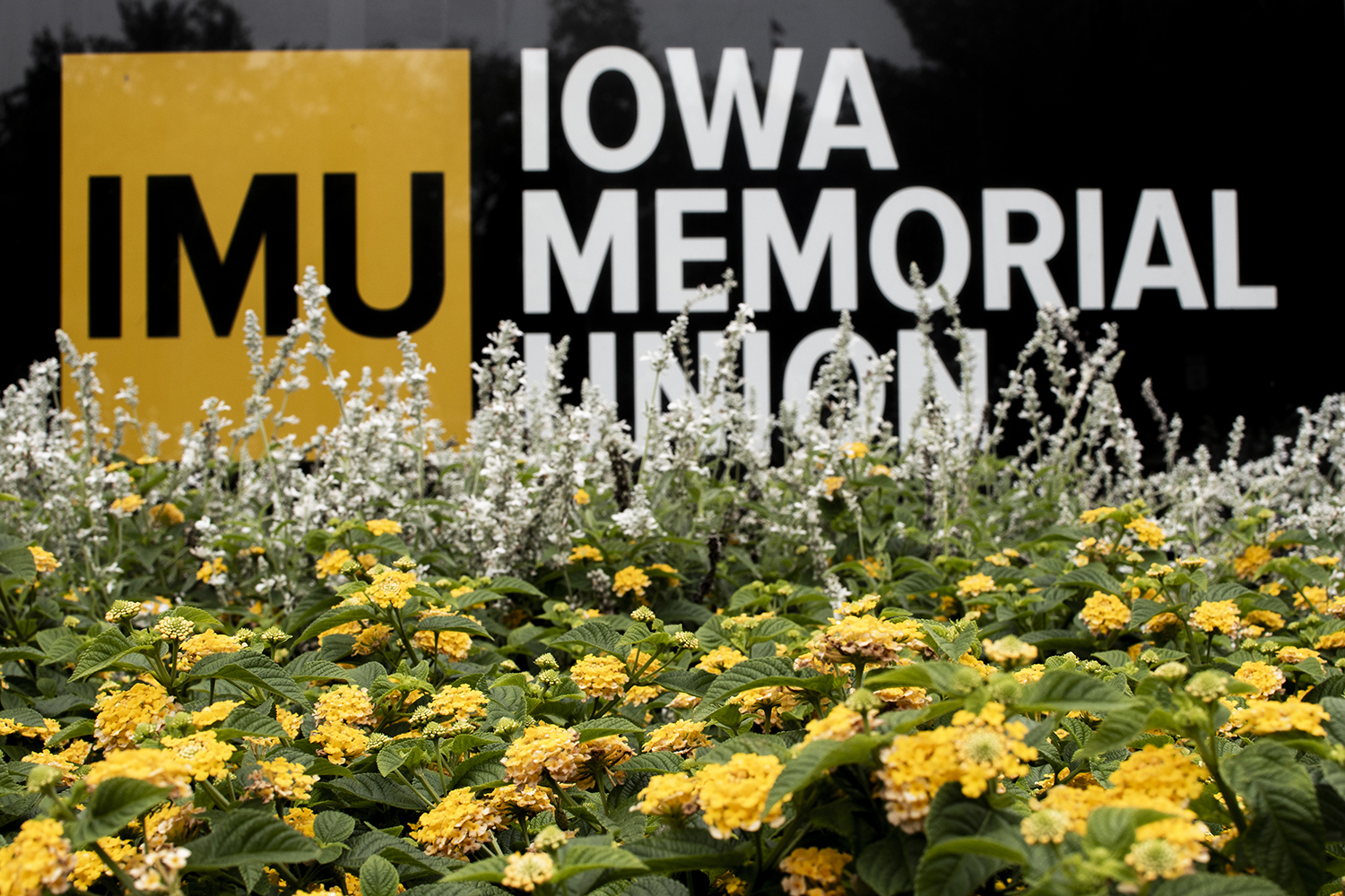 The Iowa Memorial Union is seen on Monday, Oct. 1, 2018.