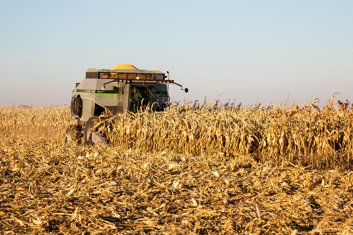 A farmer harvests corn near Washington, Iowa on Sunday, Nov. 19, 2017.