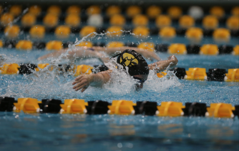 The University of Iowa: Birthplace of the butterfly stroke