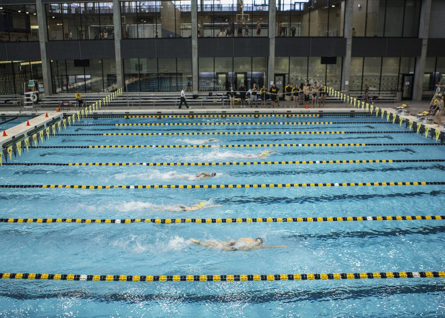 Iowa+swimming+and+diving+heads+to+Minnesota+for+tough+competition