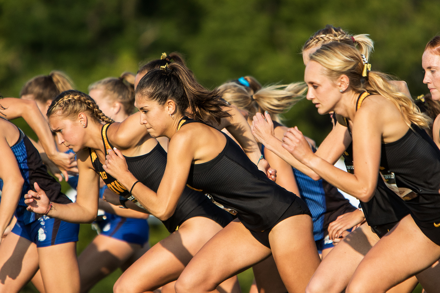 The Iowa Women's Cross Country team sprints out of the box at the start of the Hawkeye Invitational Cross Country meet on Friday, Sept. 1, 2017.