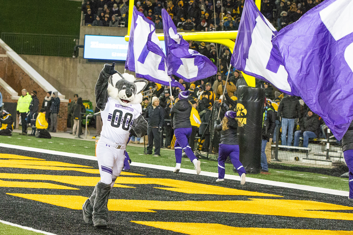 Willy the Wildcat cheers after a Northwestern touchdown during the Iowa/Northwestern game at Kinnick Stadium on Saturday, November 10, 2018. The Wildcats defeated the Hawkeyes 14-10. (Katina Zentz/The Daily Iowan)