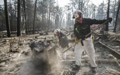 A search and rescue team comb through debris for human remains after the Camp Fire destroyed most of Paradise, California, on Nov. 20, 2018. (Marcus Yam/Los Angeles Times/TNS)