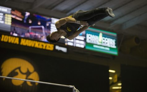 Iowa men's gymnastics falls at Illinois