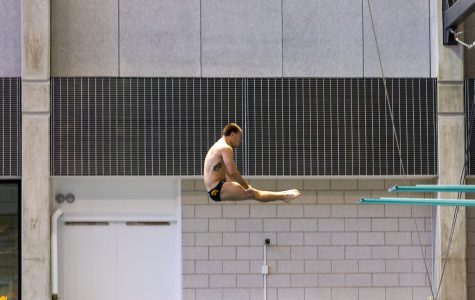 Iowa diving sends Hoherz to NCAA finals
