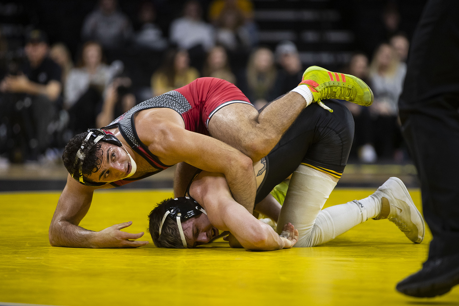 Iowa%27s+Mitch+Bowman+wrestles+Rutgers%27+Joseph+Grello+during+the+Iowa%2FRutgers+wrestling+meet+at+Carver-Hawkeye+Arena+on+Friday%2C+January+18%2C+2019.+Grello+defeated+Bowman%2C+3-0.+The+Hawkeyes+defeated+the+Scarlet+Knights%2C+30-6.+