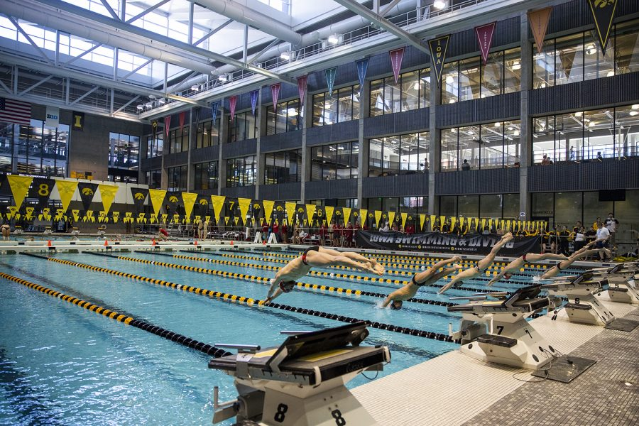 Swimmers+dive+into+the+water+during+the+Northwestern%2FWisconsin+swim+meet+at+the+Campus+Recreation+and+Wellness+Center+on+Saturday%2C+January+19%2C+2019.+The+men%27s+swimming+and+diving+team+defeated+the+Badgers%2C+164-136%2C+and+the+Wildcats%2C+194-106.+The+women%27s+swimming+and+diving+team+fell+to+the+Badgers%2C+191-109%2C+and+the+Wildcats%2C+178-122.+