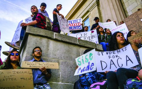 UI Dreamers remain safe but want permanent solution