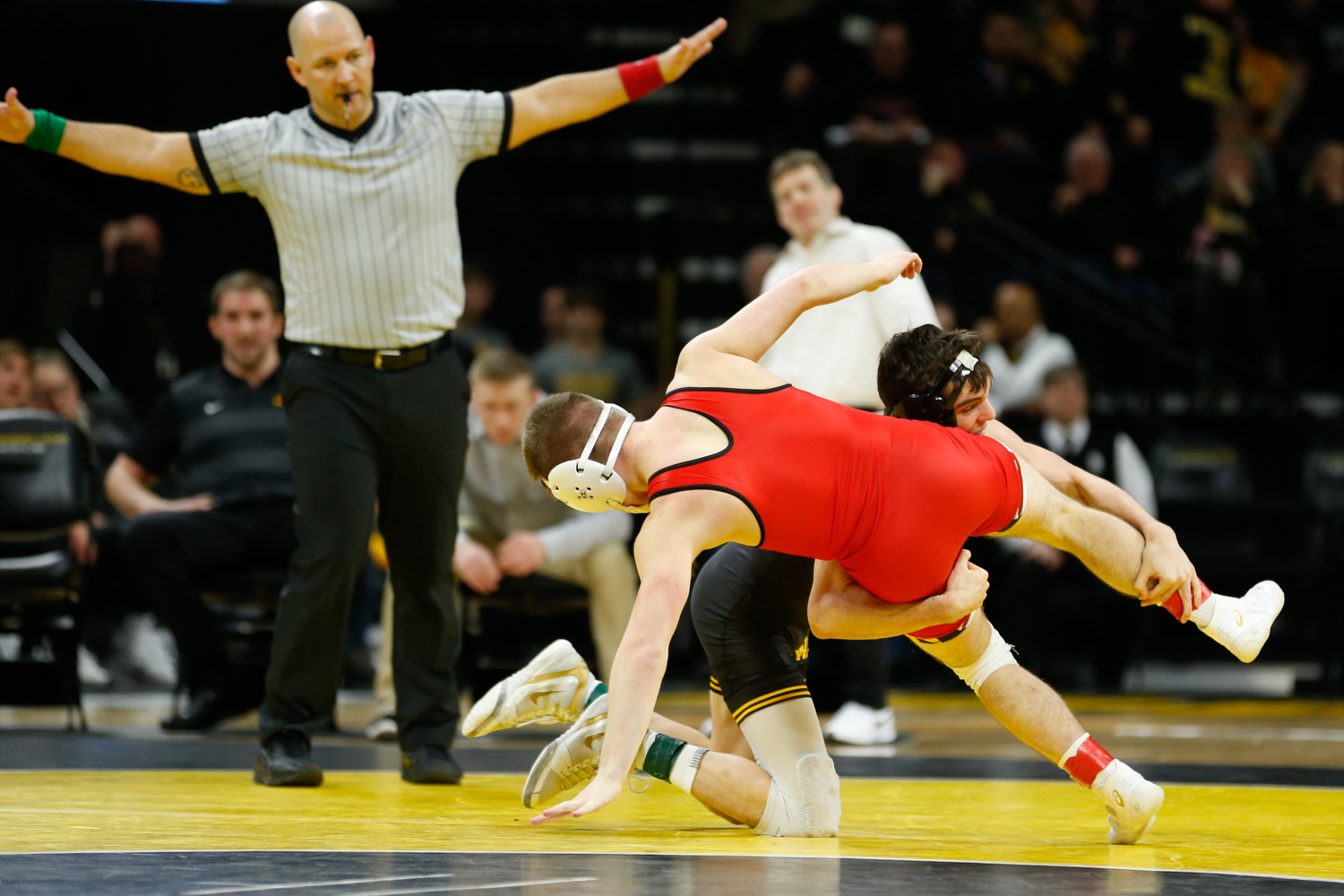 Iowa Wrestler Paul Glynn grapples with Maryland Wrestler Orion Anderson in the 133lb weight class match during a wrestling dual meet at Carver-Hawkeye Arena on Friday, Feb. 8, 2019. Glynn won via pin at 1:46 and the Hawkeyes defeated the Terrapins 48-0.