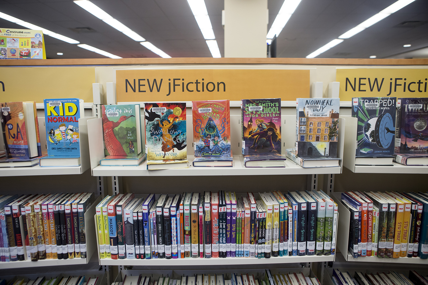 Junior fiction novels rest on shelves at the Iowa City Public Library in Iowa City on Tuesday, February 5, 2019.