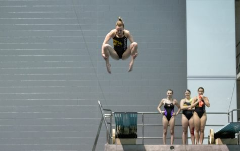 Four Iowa divers qualify for NCAAs