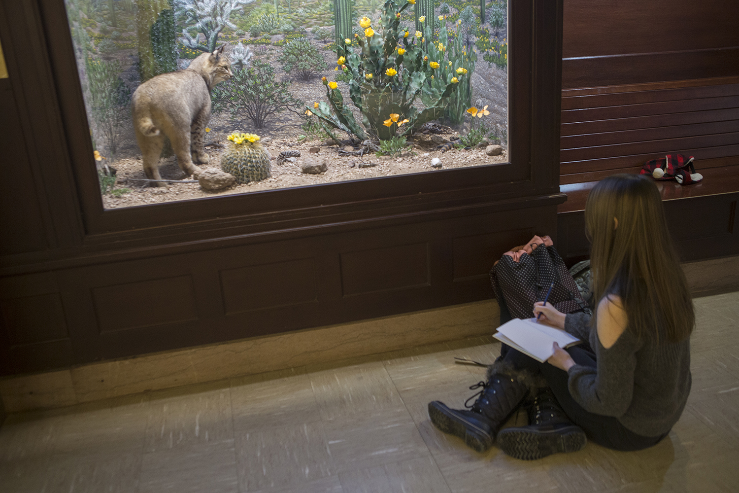 An artist sketches in the Museum of Natural History in MacBride Hall for Art Nite on Thursday, Feb. 7, 2019.