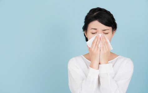 The Doctor Is In: How to take on the common cold