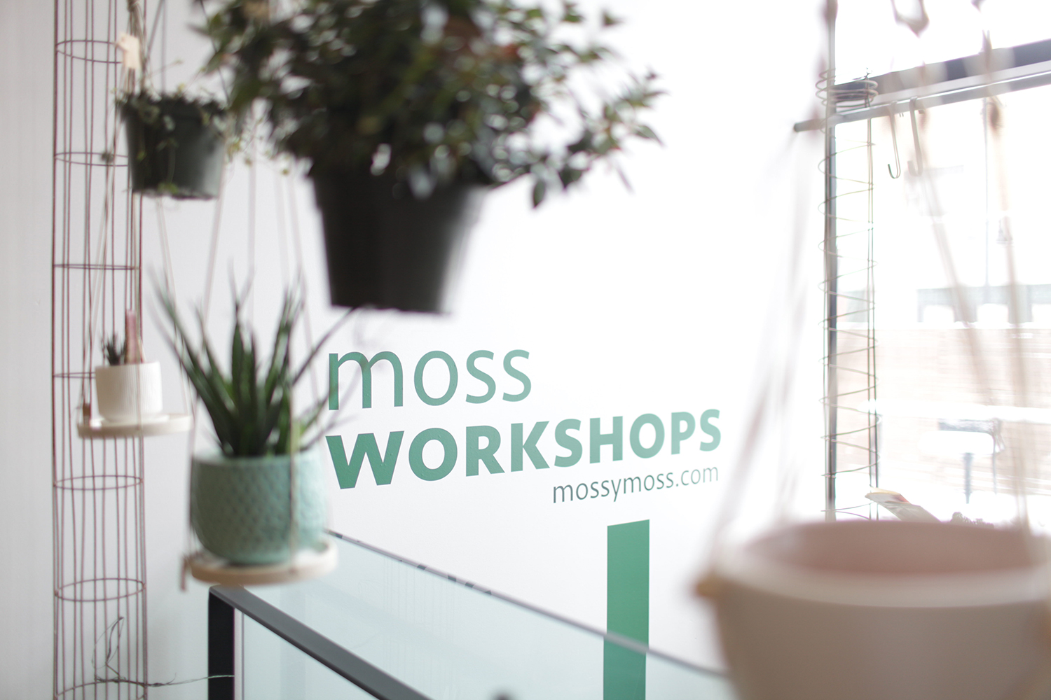 Moss sign is seen on February 12, 2019.