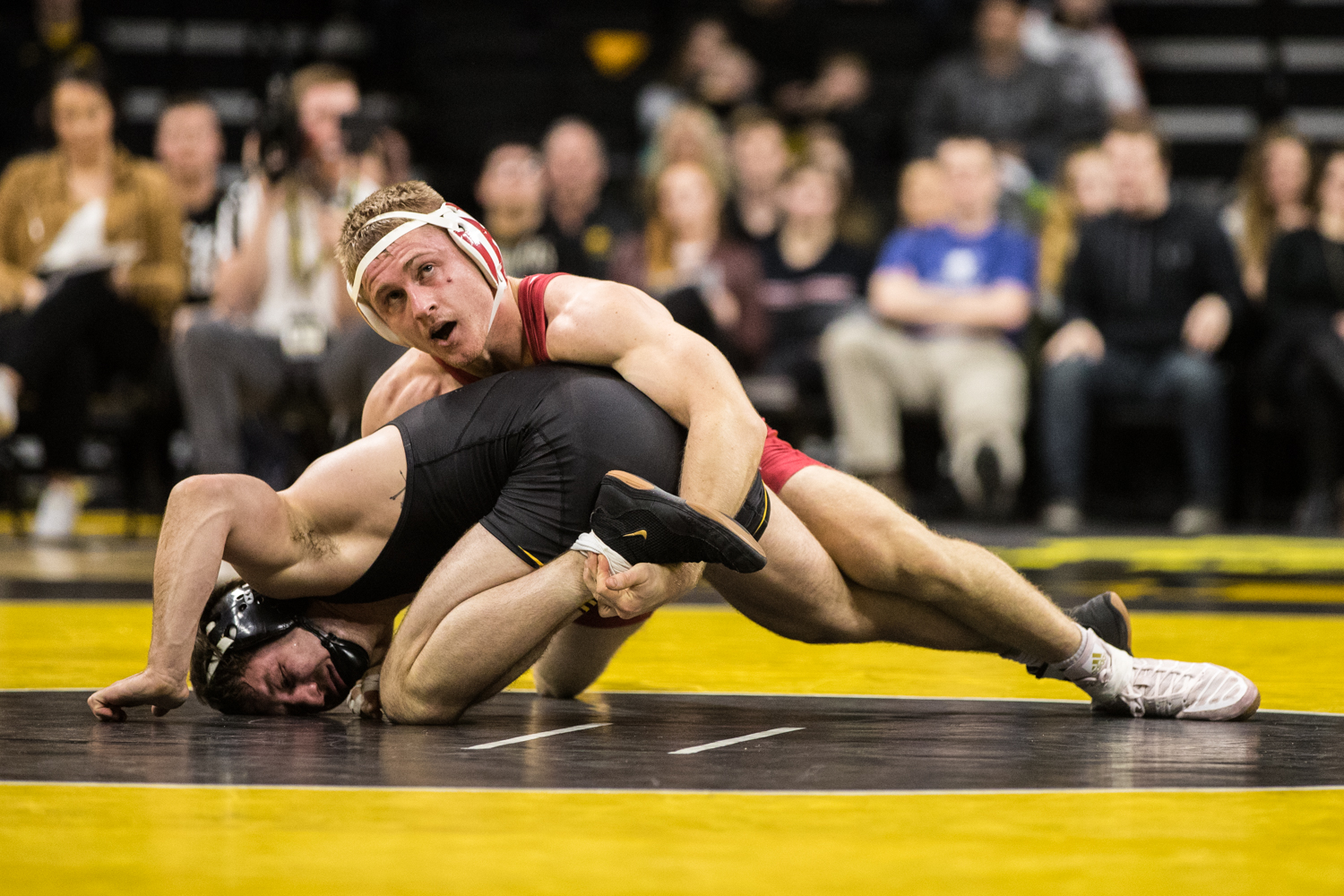 Iowa%27s+Jeren+Glosser+wrestles+Indiana%27s+Jake+Danishek+during+a+wrestling+match+between+Iowa+and+Indiana+at+Carver-Hawkeye+Arena+on+Friday%2C+February+15%2C+2019.+The+Hawkeyes%2C+celebrating+senior+night%2C+defeated+the+Hoosiers+37-9.