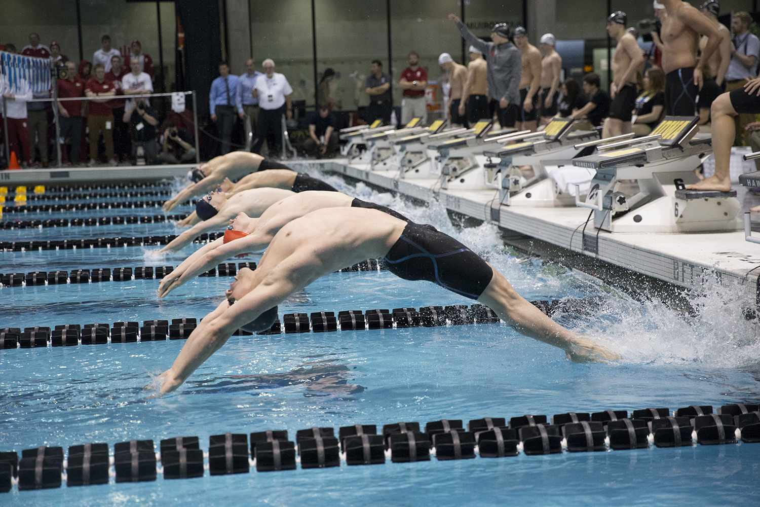 Swimmers+diving+in+on+Thursday%2C+February+28%2C+2019.+The+Big+Ten+Men%27s+Swimming+and+Diving+Championship+was+held+at+the+University+of+Iowa+Aquatic+Center.+