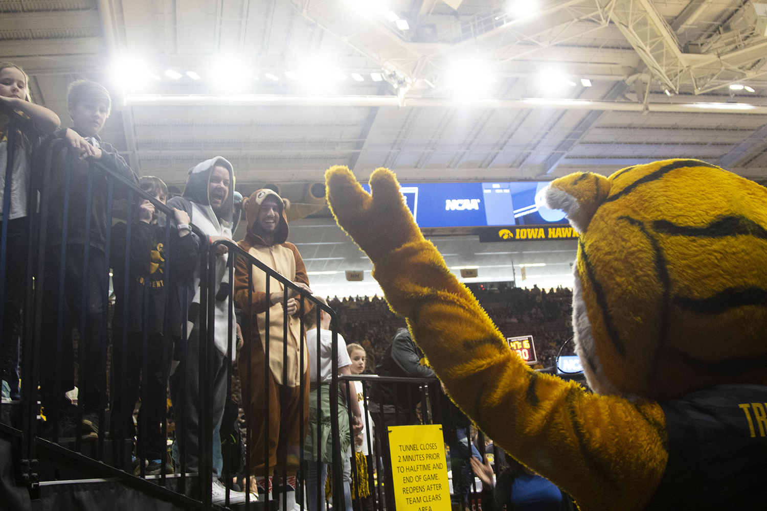 Truman+the+Tiger+greets+fans+before+the+Iowa%2FMizzou+NCAA+Tournament+second+round+women%27s+basketball+game+in+Carver-Hawkeye+Arena++on+Sunday%2C+March+24%2C+2019.+The+Hawkeyes+defeated+the+Tigers%2C+68-52.