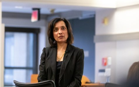 Meenakshi Gigi Durham emerges as first candidate in UI associate VP search
