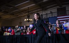 Tietz: Kamala Harris Campaign: My take