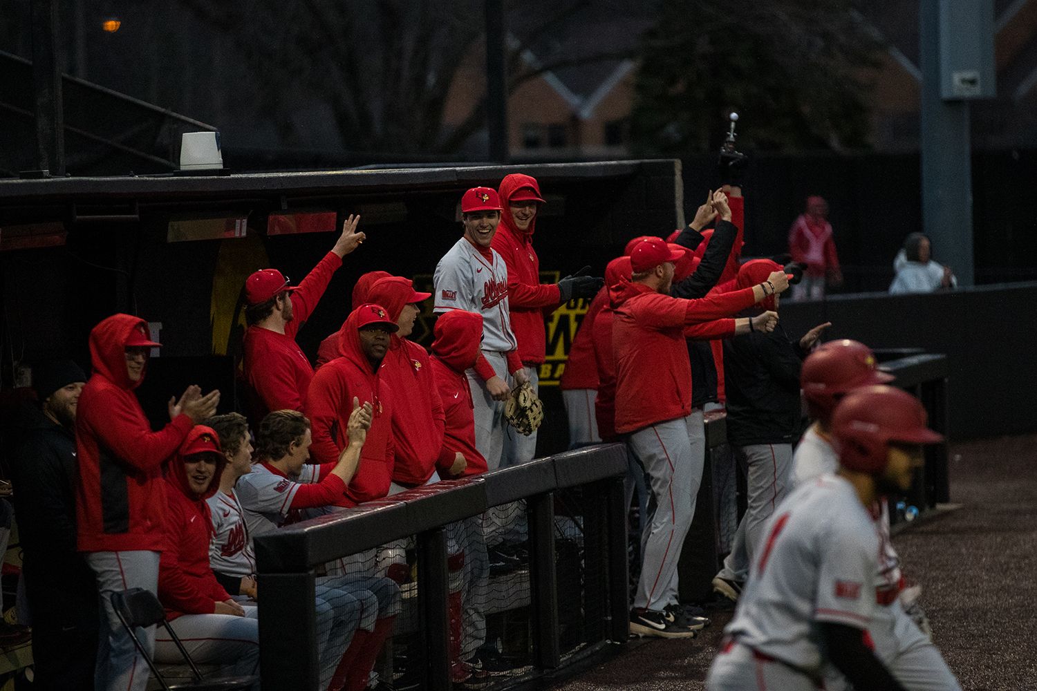 The+Redbirds+dugout+celebrates+after+scoring+a+point+during+a+Iowa+Hawkeyes+baseball+game+against+Illinois+State+on+Wednesday%2C+Apr.+3%2C+2019.+The+Hawkeyes+lost+to+the+Redbirds+11-6.+%28Roman+Slabach%2FThe+Daily+Iowan%29