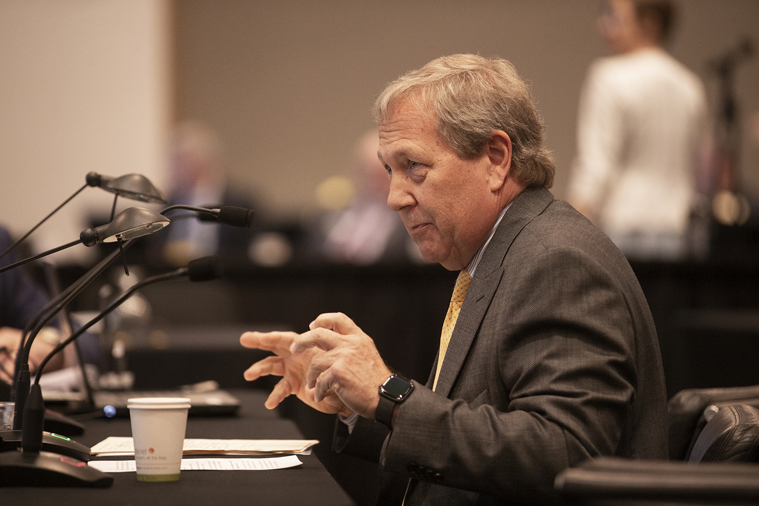 University of Iowa President Bruce Harreld speaks in front of the state Board of Regents on Thursday, April 18, 2019.