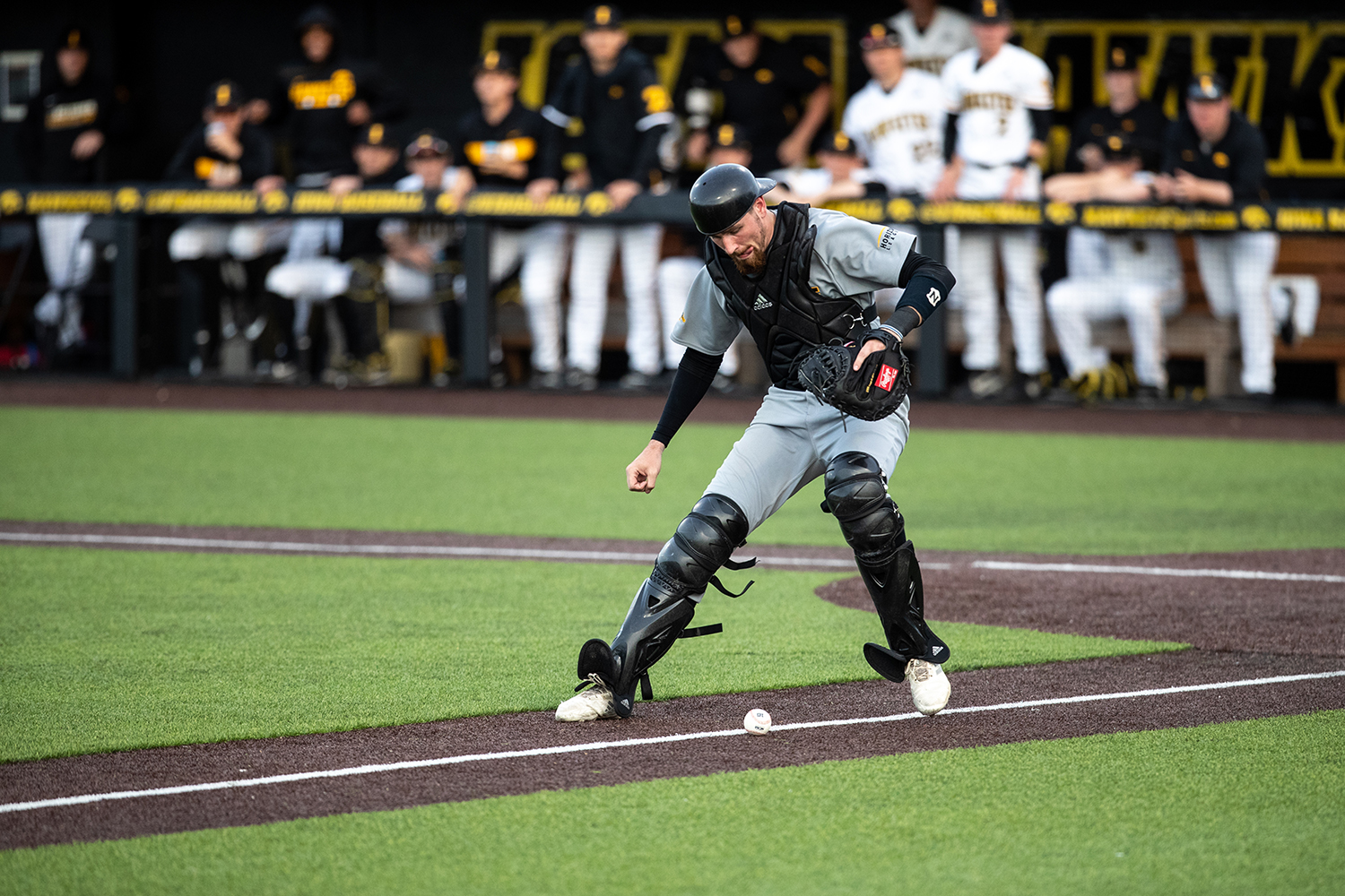 Milwaukee+catcher+Tyler+Bordner+waits+for+the+ball+to+become+a+foul+during+the+baseball+game+against+Iowa+at+Duane+Banks+Field+on+Tuesday%2C+April+23%2C+2019.+The+Hawkeyes+defeated+the+Panthers+5-4.